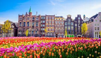 """KONKURS Wiener """"Tulipanowy Zawrót Głowy"""". Wygraj wyjazd do Holandii!"""